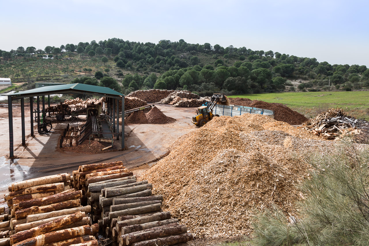 madera pales Aserraderos de Villaviciosa Cordoba