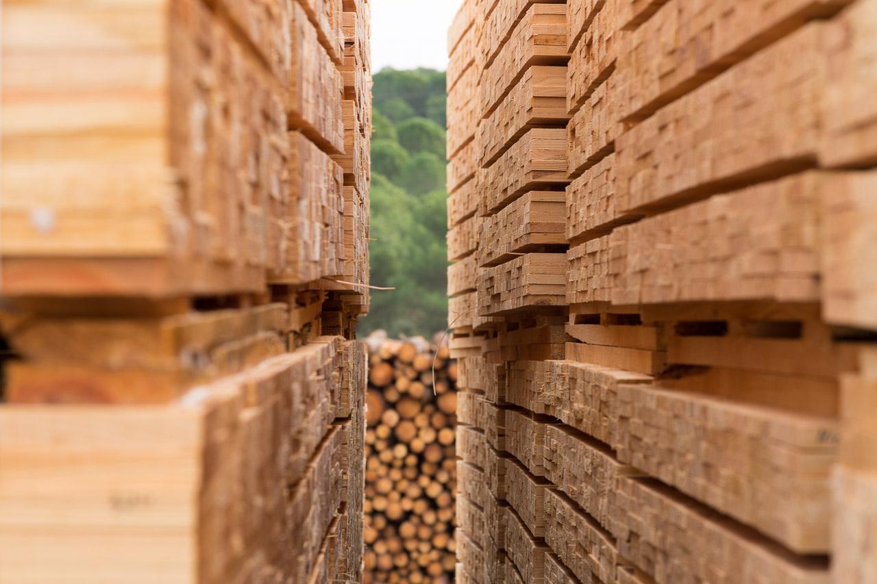 Aserraderos de Villaviciosa madera en Córdoba madera palés